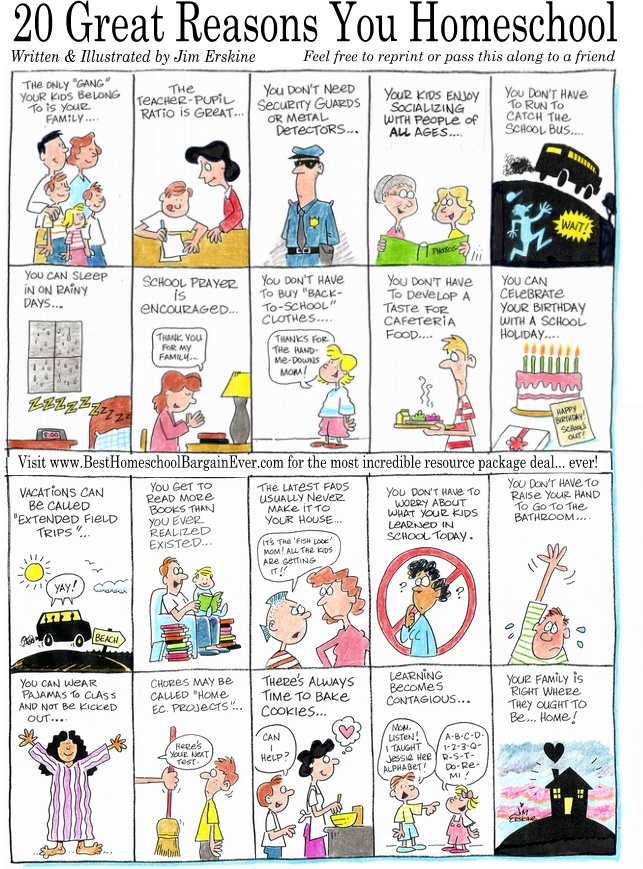 Homeschool Cartoon - 20 Great Reasons You Homeschool