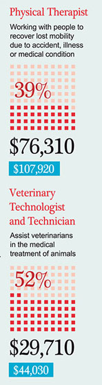 Physical Therapist • Veterinary Technologist and Technician