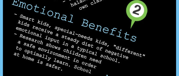 "Emotional Benefits - Smart kids, special-needs kids, ""different"" kids receive negative emotional input in school. Children need a safe environment to learn."
